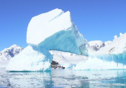 Top 7 sites on an Antarctic cruise