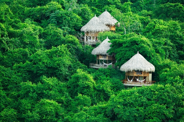 The world's best treehouse hotels