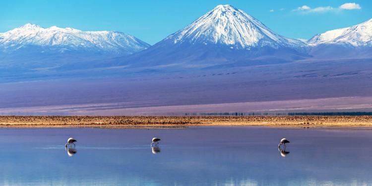 Salar de Atacama, Chile | TravelManagers Australia