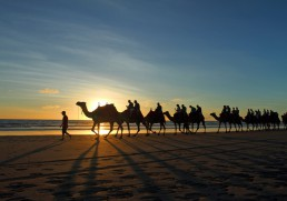The best camel treks around the world