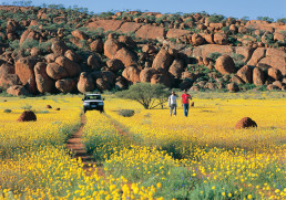 Experiencing the West Australian outback and its breathtaking wildflowers.