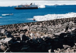 Antarctica – All you need to know