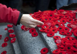 Lest We Forget - Step into the Pages of History with a Commemorative Tour