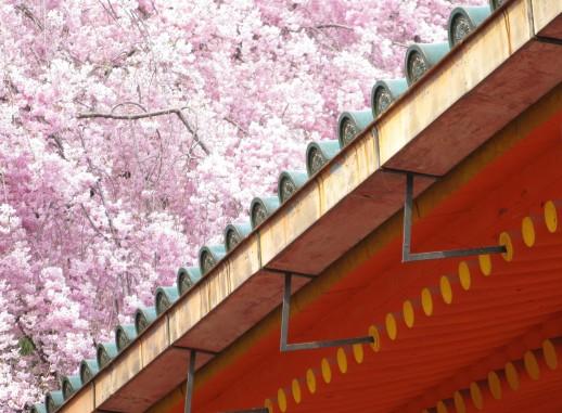 Six Sublime Spring Destinations