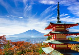 Small Group Tours in Japan