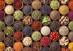Got spice? A culinary tour of India