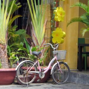 Vietnam - Ladies only tour
