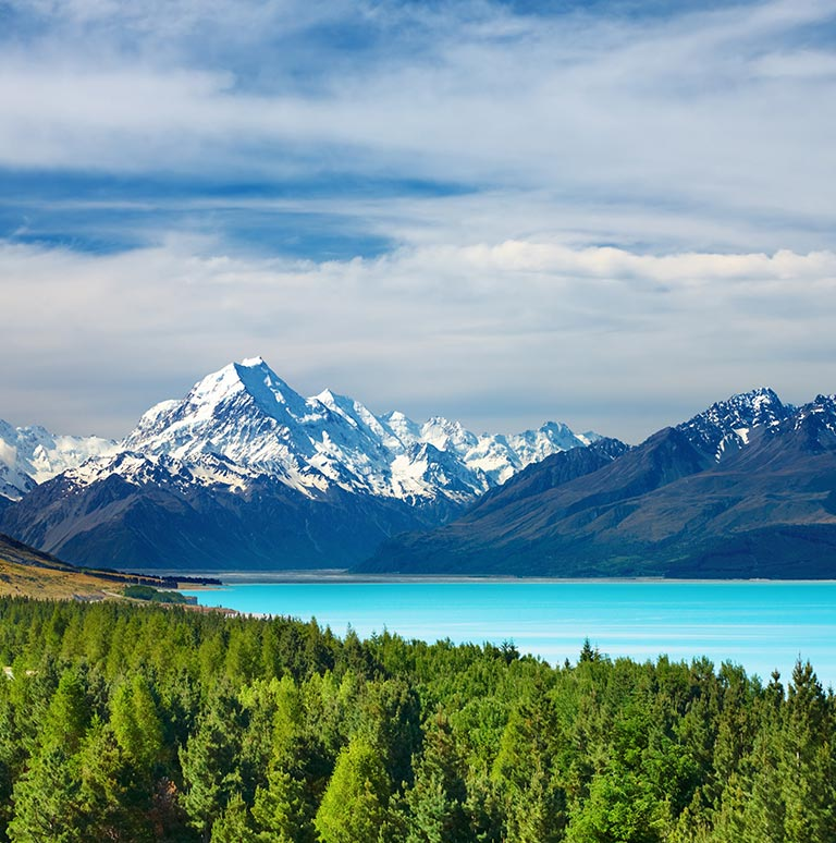 Coach Tour Discovery of New Zealand