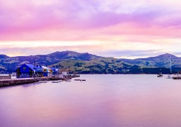 5 things you can expect on a New Zealand Cruise
