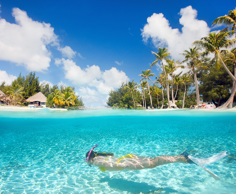 Beginners' Guide to the Maldives