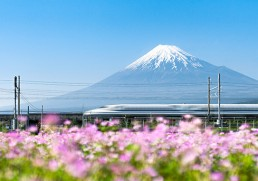Five amazing outdoor experiences in Japan