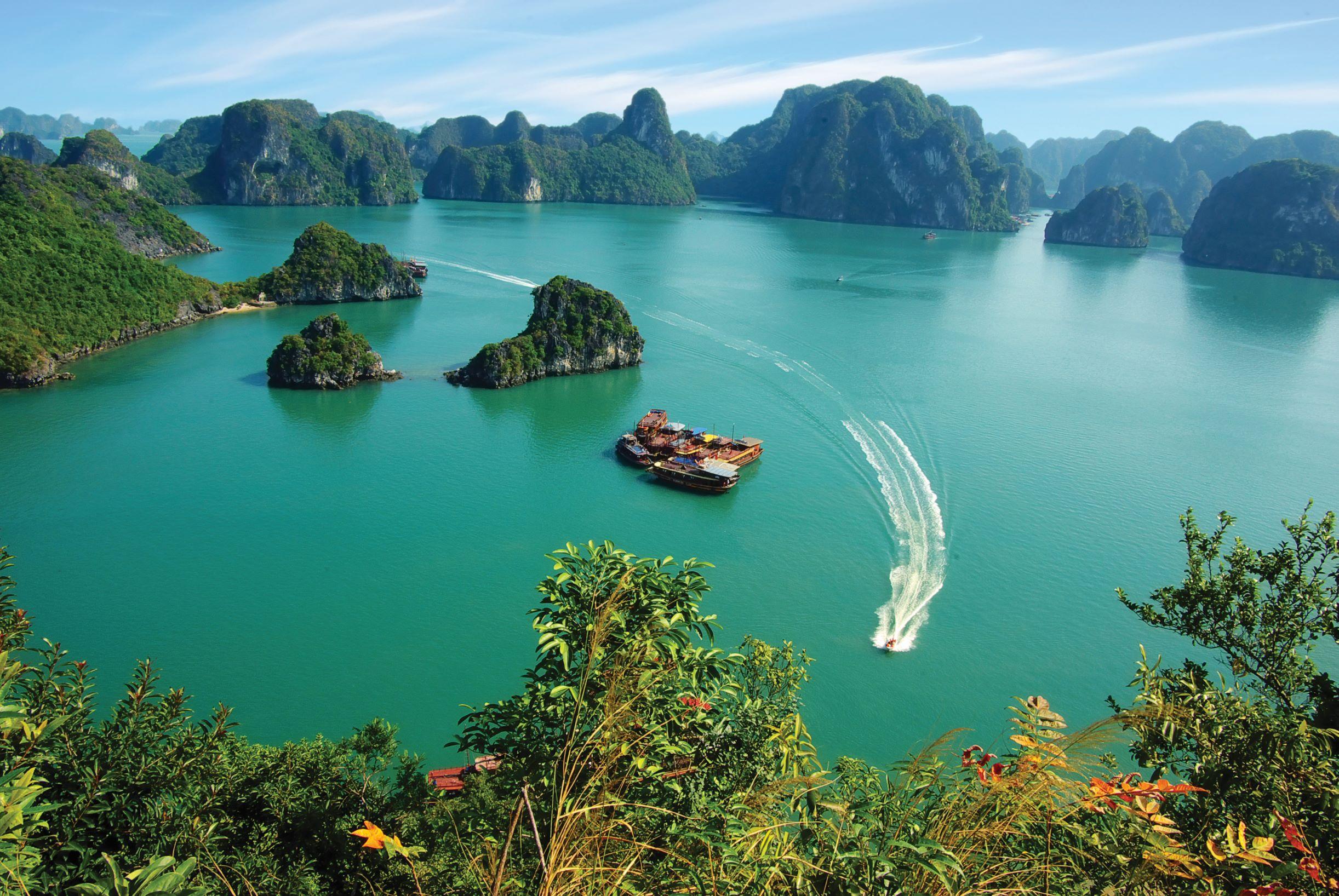 The Treasures of Vietnam