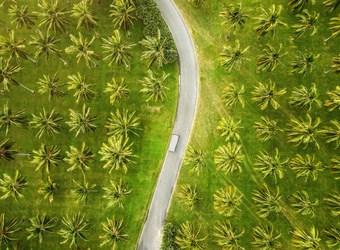 Cairns Destination Guide | TravelManagers