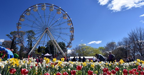 Ferris Wheel at Floriade, Commonwealth Park, Canberra, Australian Capital Territory, Australia | TravelManagers Australia