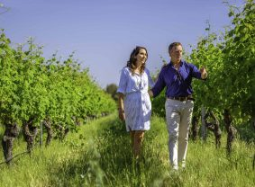Couple walking through the vines at Amelia Park Wines, Wilyabrup | TravelManagers Australia