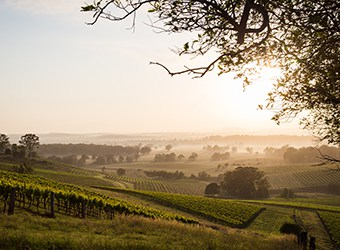Hunter Valley NSW | TravelManagers