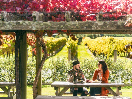 Our guide to New Zealand brings us closer to our friends across the Tasman