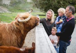 New Zealand South Island Family Road Trip - 10 Stops Everyone Will Love