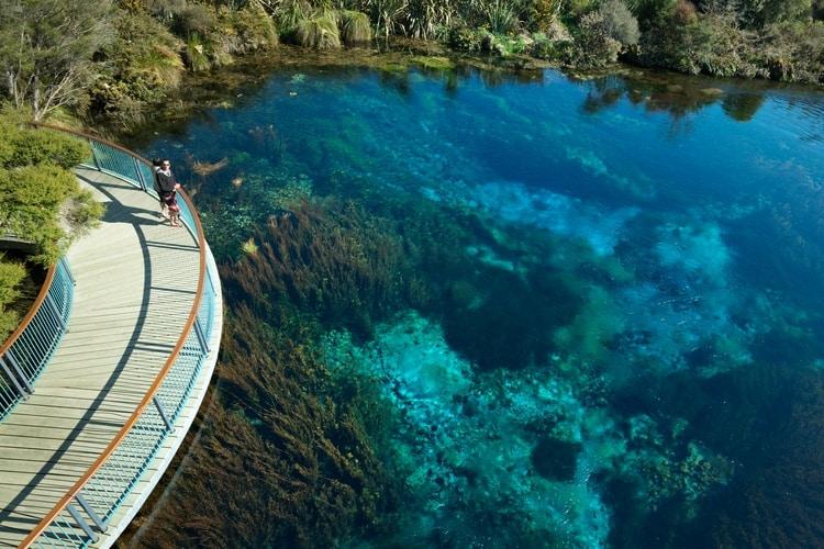 Te Waikoropupu Springs New Zealand